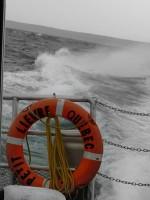 permis côtier, bateau